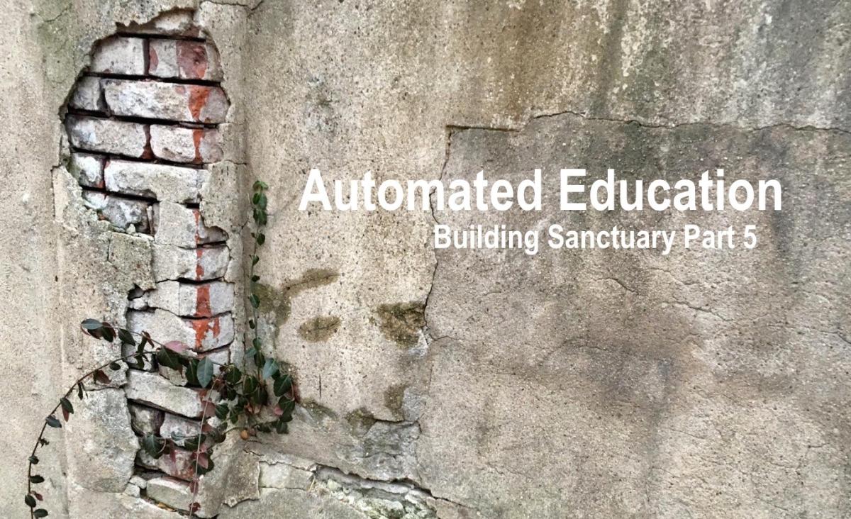 Automated Education: Building Sanctuary Part5