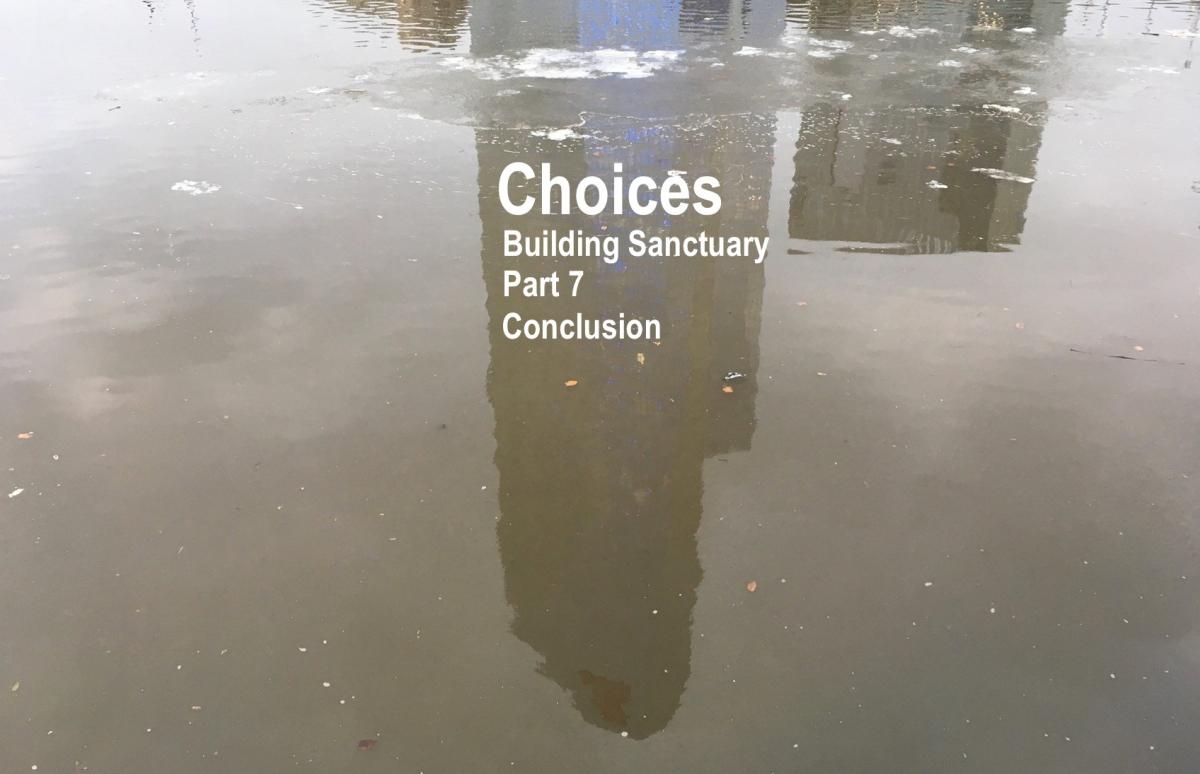 Choices: Part 7 of BuildingSanctuary