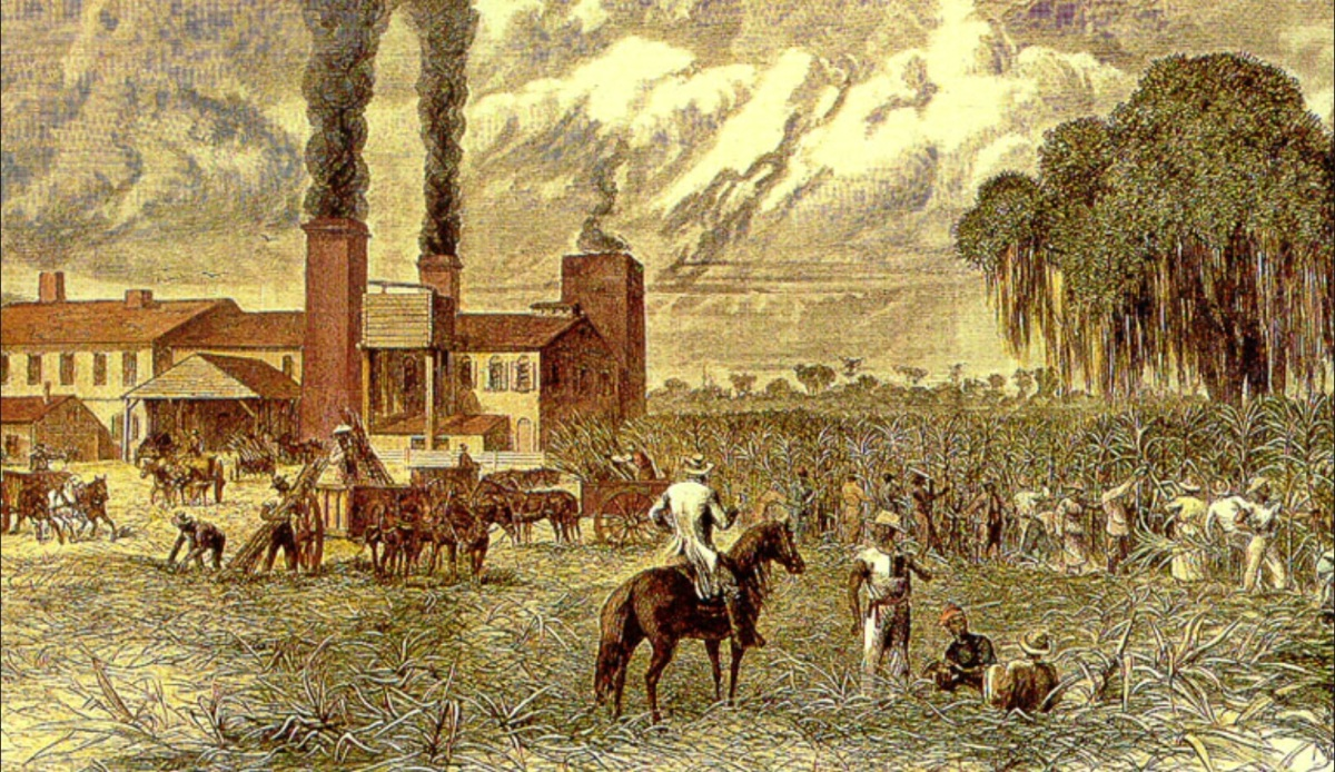 "Could ""Community Schools"" Be Today's Sugar Refineries?"