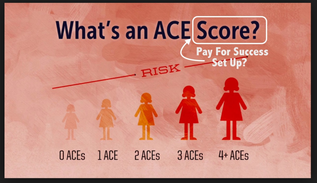 "ACE (Adverse Childhood Experience) Scores: Part of the ""Pay for Success"" Plan?"