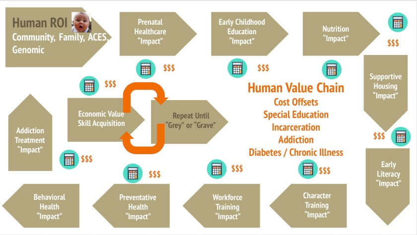 Human Value Chain Infographic