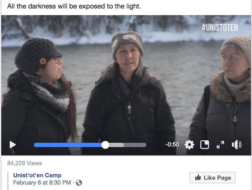 Statement of Solidarity In Support of Wet'suwet'en First Nation: All The Darkness Shall Be Exposed To TheLight